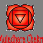 Chakra mooladara, raiz, yoga y movimiento